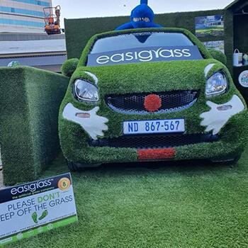 Artificial Grass Umhlanga Grass Car