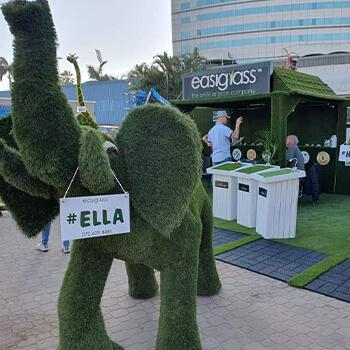 Artificial Grass Umhlanga Showroom